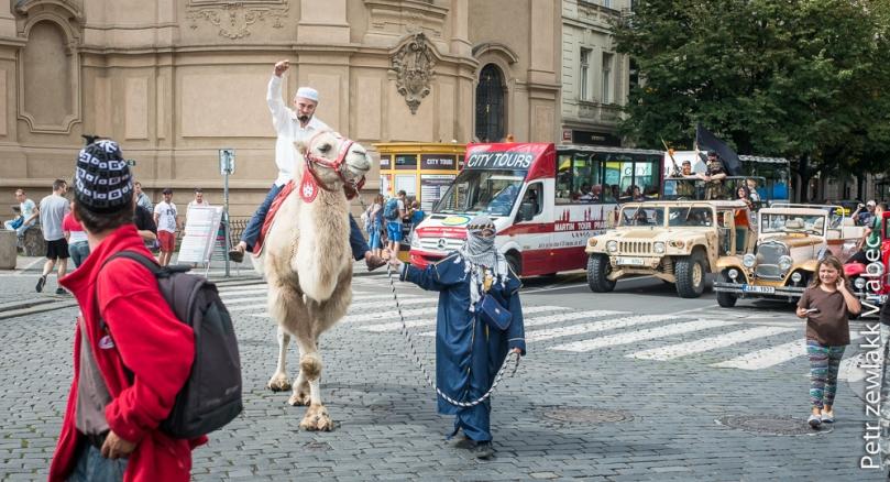 Triumfalny wjazd na wielbłądzie. Zdjęcie: a2larm-cz